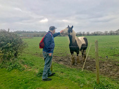 viking way part 2 barnetby horse small